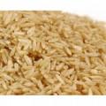 Granen -zaden van grassen-